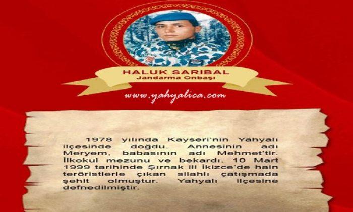 Haluk Sarıbal