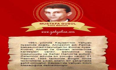 Mustafa Gusül