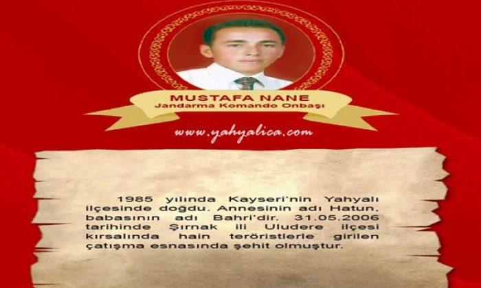 Mustafa Nane