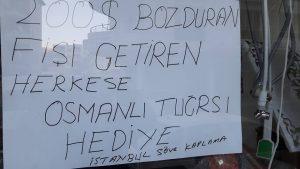 mevlut-gurbuz-istanbul-sove-kaplama
