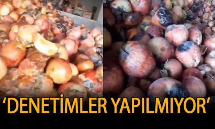 Meyve suyu fabrikasında 'tiksindirici' görüntüler: Halk sağlığı hiçe sayıldı!