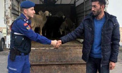 Yahyalı'da Hayvan Hırsızları Tutuklandı